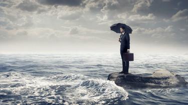 В какие сроки контрольный олрган в сфере закупок должен размещать распоряжения уведомлять